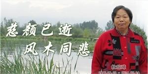 杜琼璋,慈颜已逝,风木同悲。